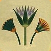 Lotus Symbol of Upper Egypt