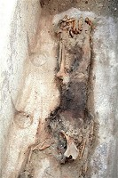 Mummy thought to be Queen Seshestet found in Egypt